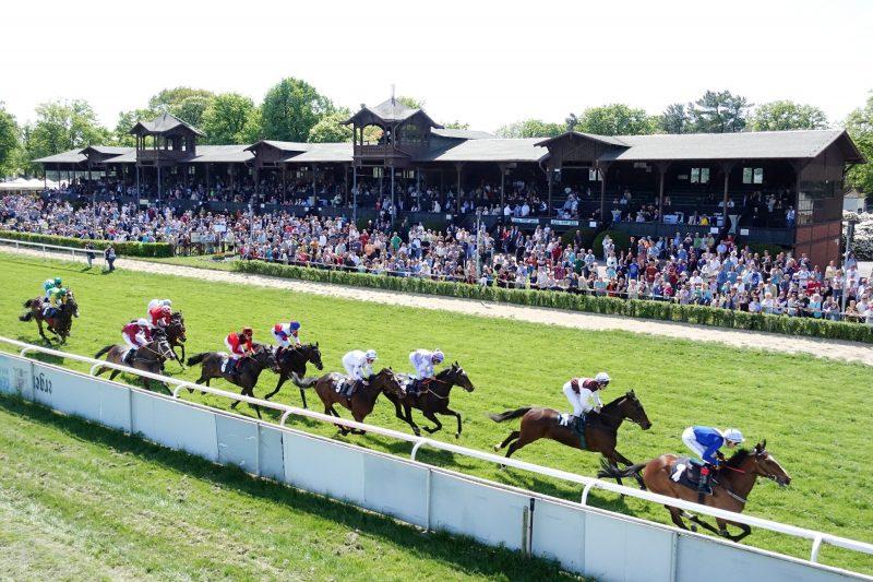 92 Pferde beim Seidnitzer Saison-Halali