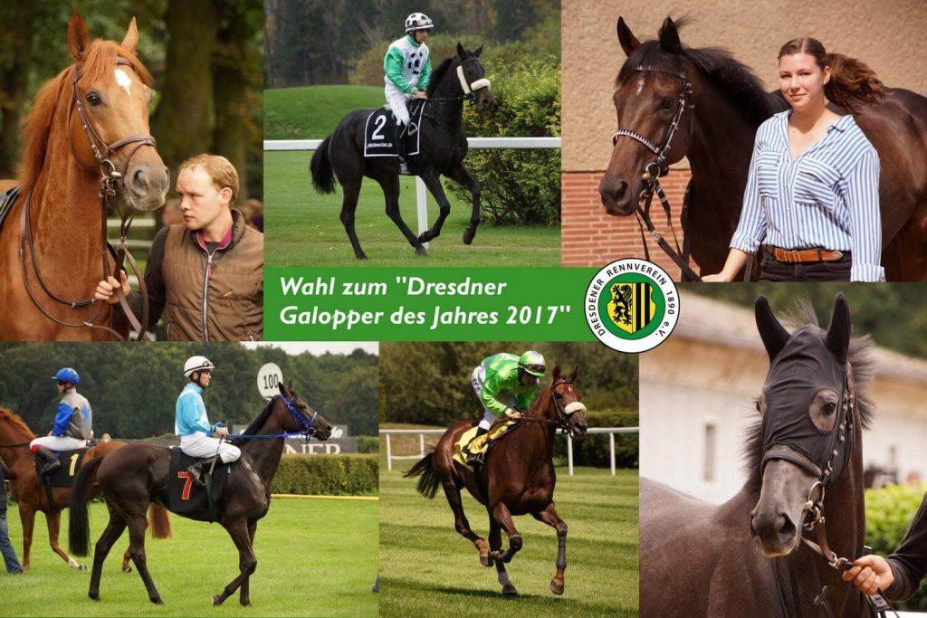 Dresdener Galopper des Jahres 2017